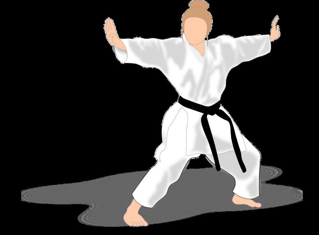 Karate Magdeburg